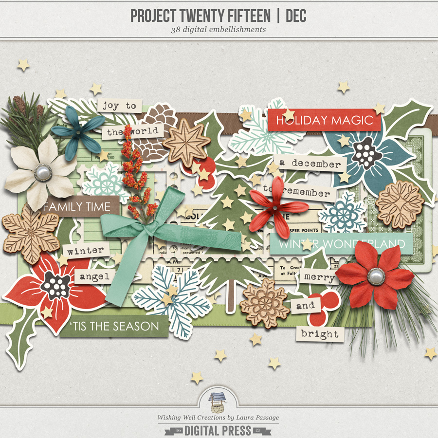 Project Twenty Fifteen | December Elements