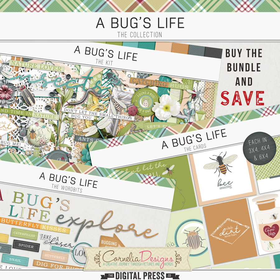 A BUG'S LIFE | COLLECTION