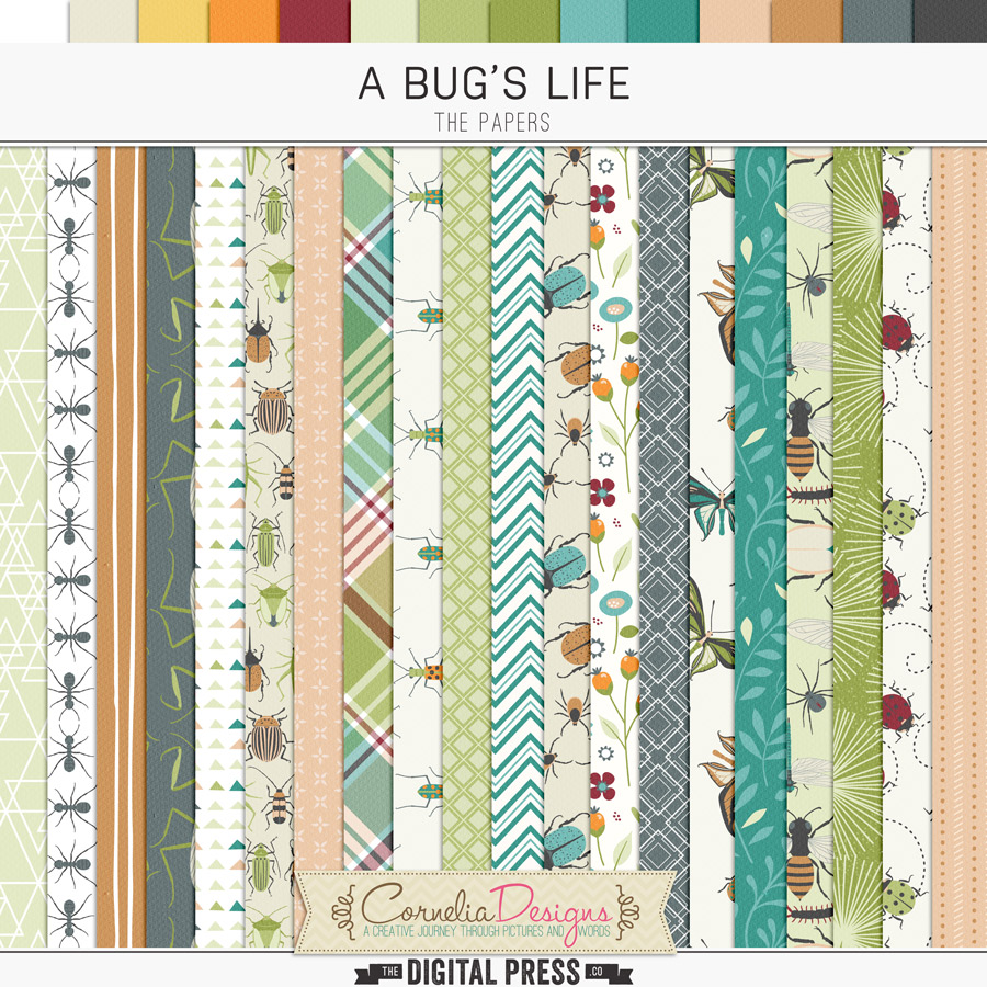 A BUG'S LIFE | PAPERS