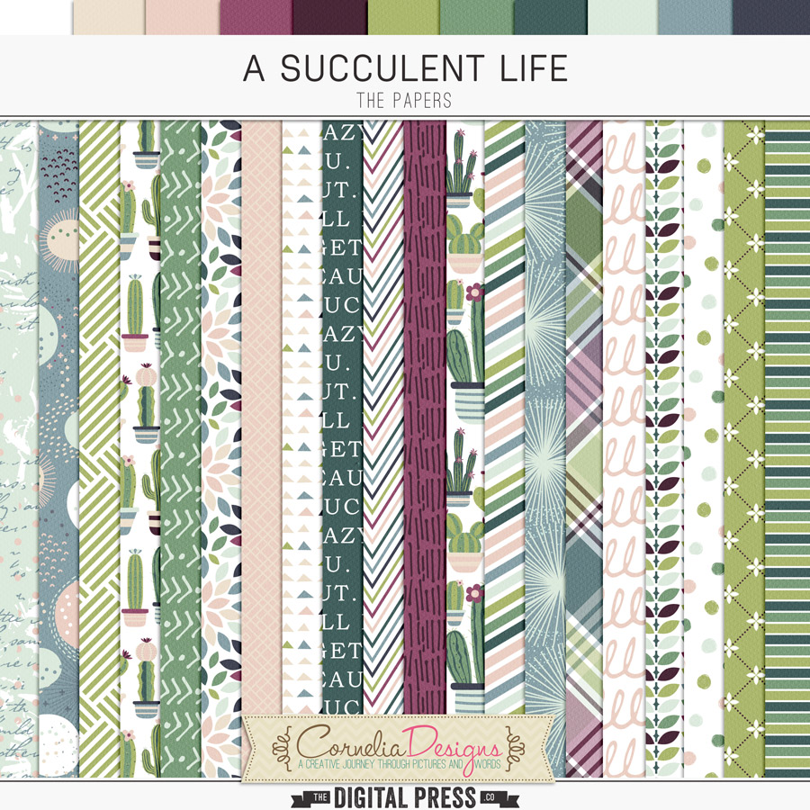 A SUCCULENT LIFE | PAPERS