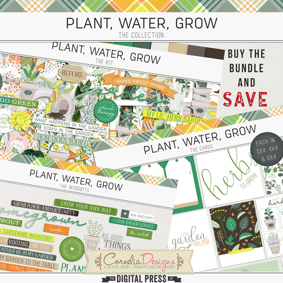 PLANT, WATER, GROW | COLLECTION