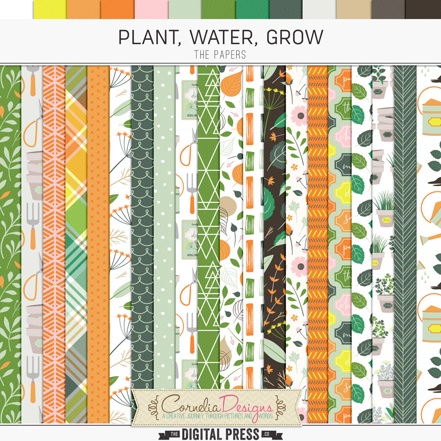 PLANT, WATER, GROW   PAPERS