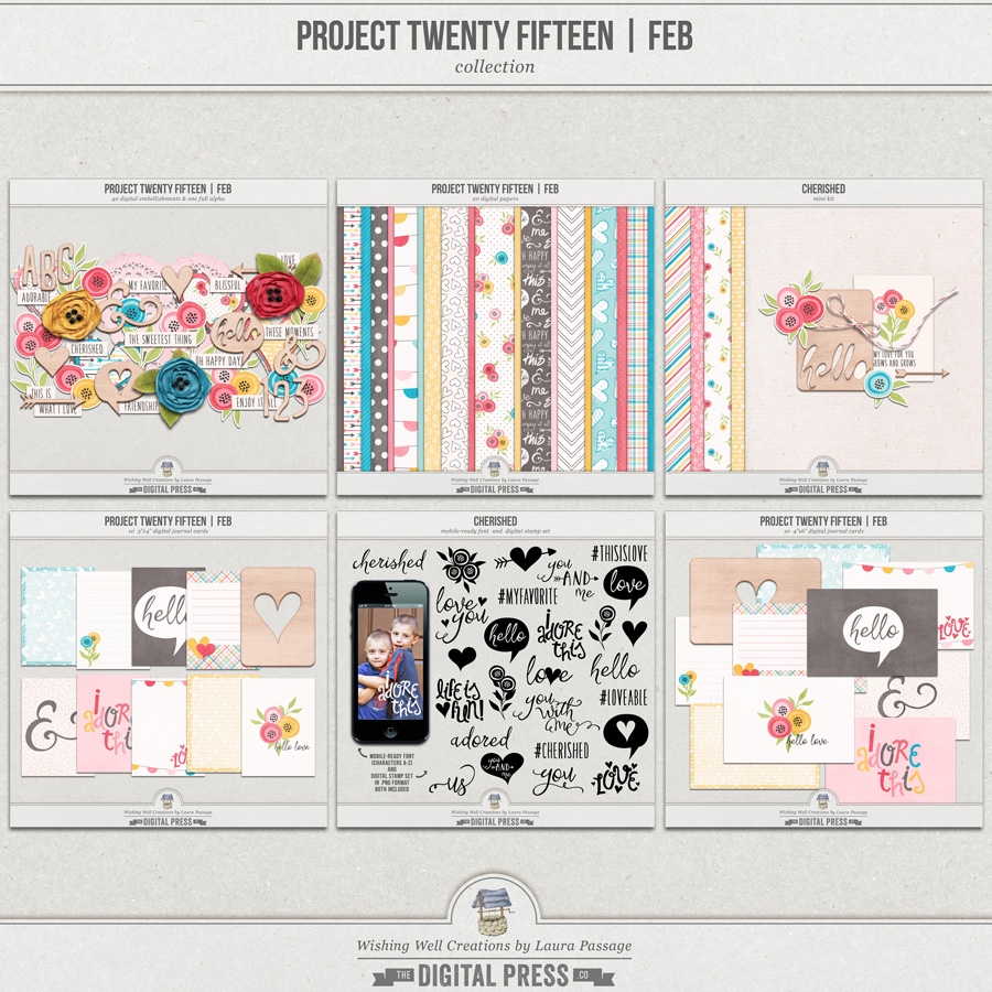 Project Twenty Fifteen | February Collection