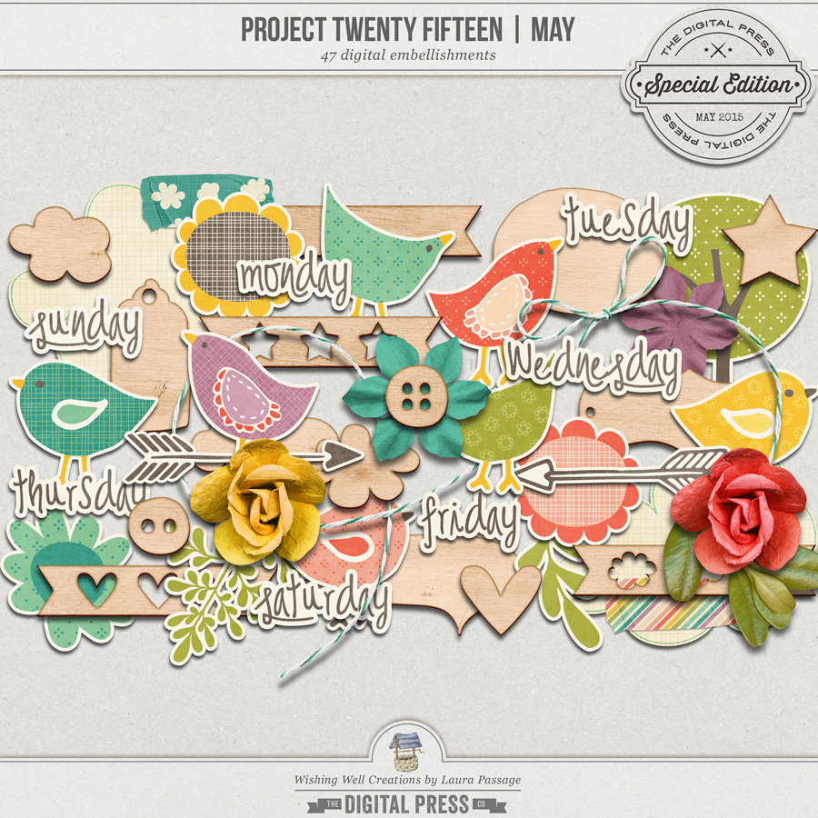 Project Twenty Fifteen | May Elements