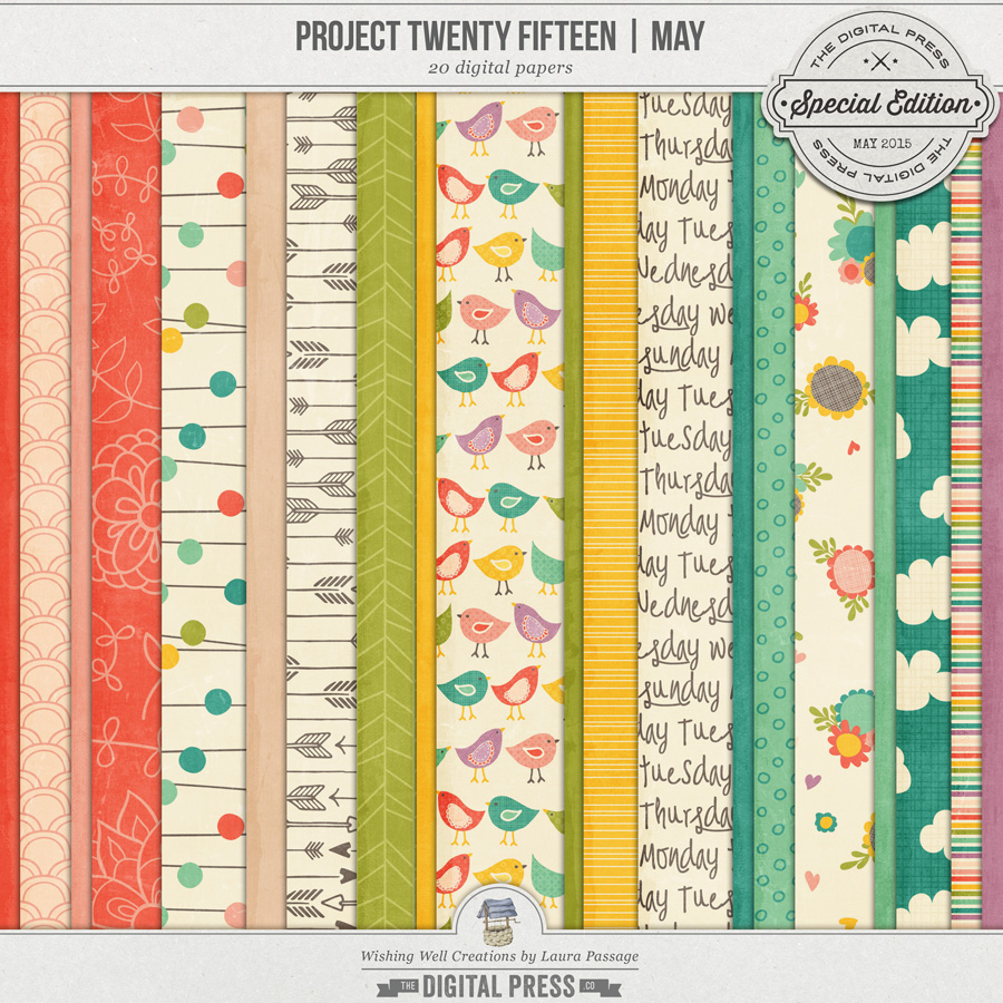Project Twenty Fifteen | May Paper