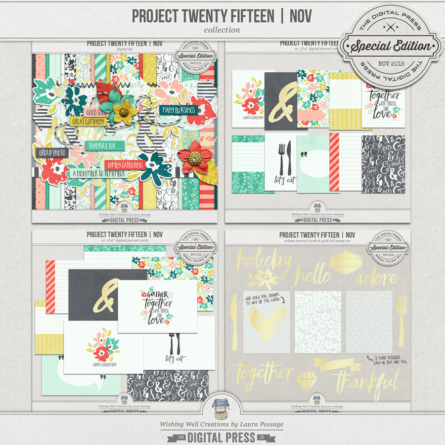 Project Twenty Fifteen | November Collection