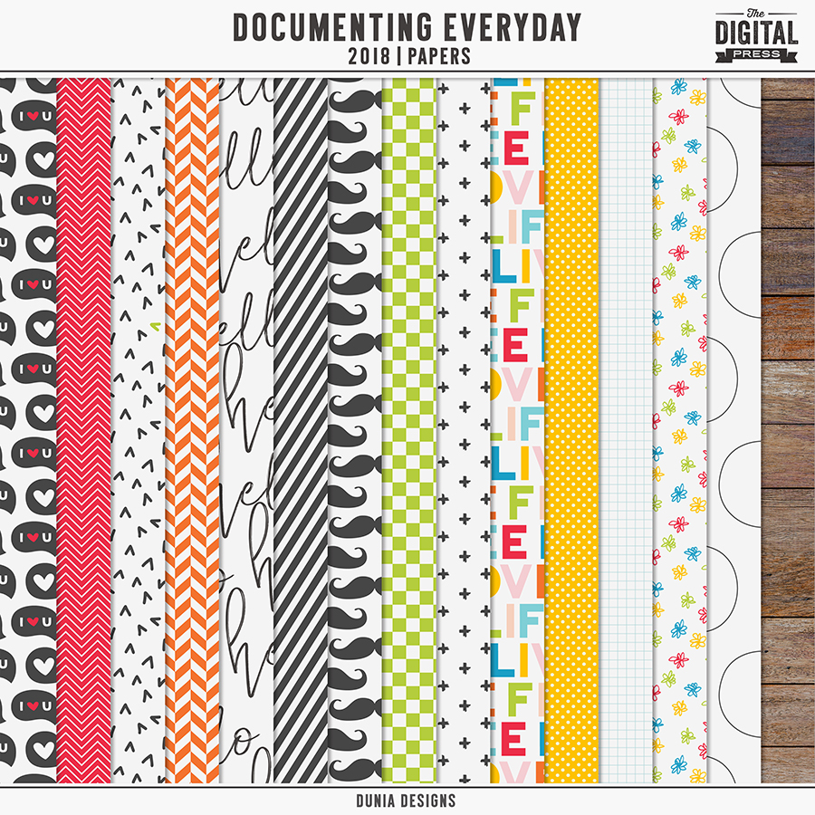Documenting Everyday (2018) Papers