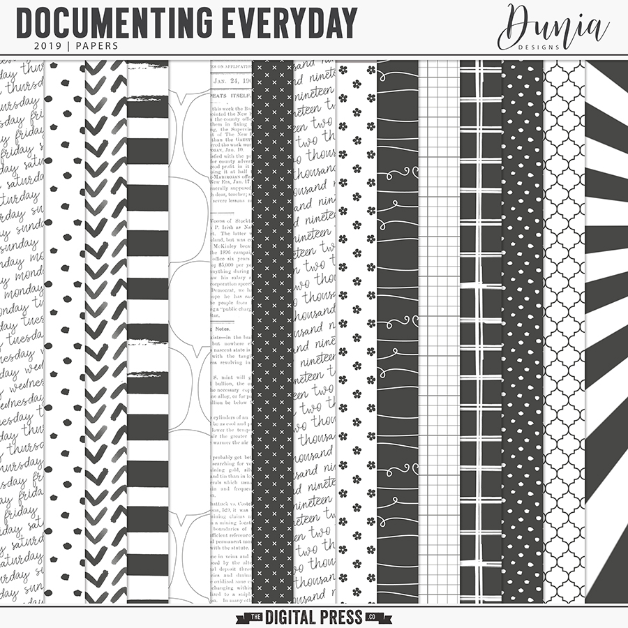 Documenting Everyday (2019) Papers