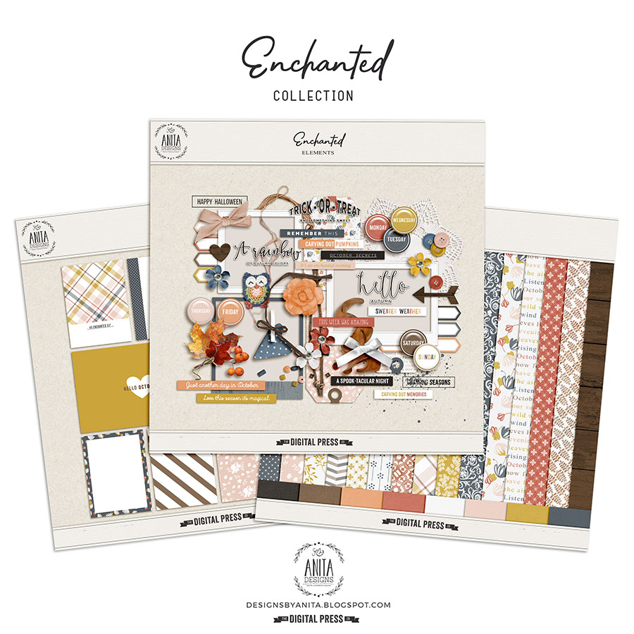 Enchanted | Collection