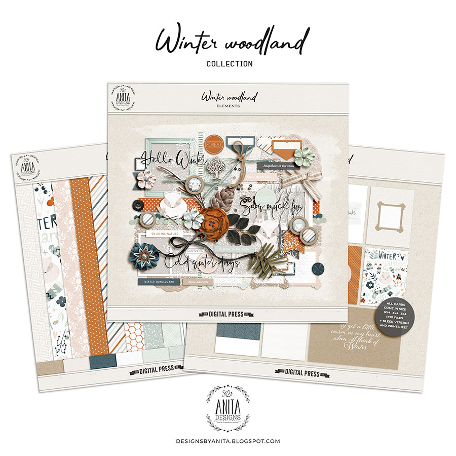 Winter Woodland | Collection