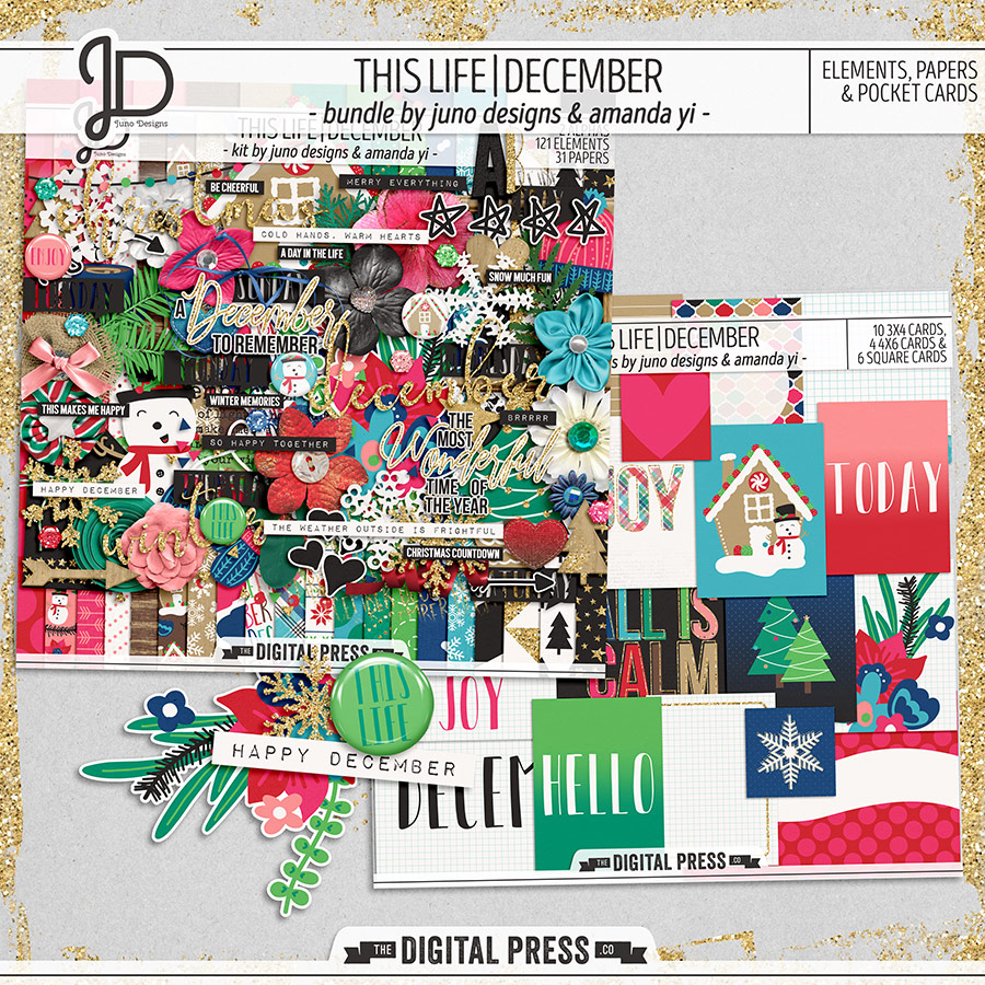 This Life | December - Bundle