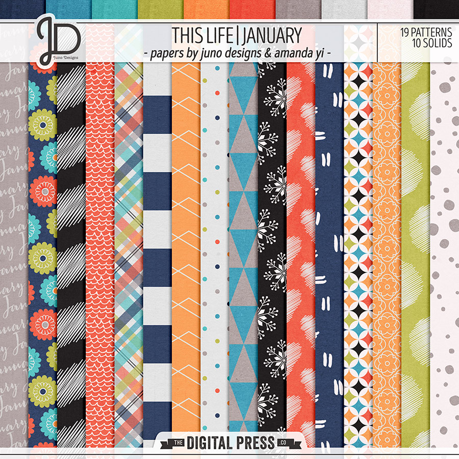 This Life   January - Papers