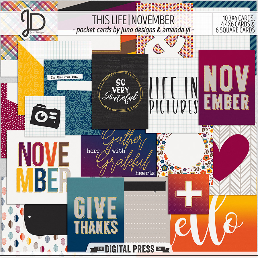 This Life | November - Pocket Cards