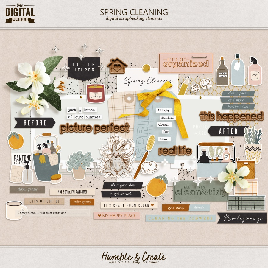Spring Cleaning | Elements