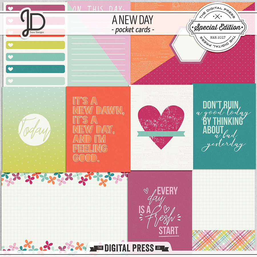 A New Day   Pocket Cards