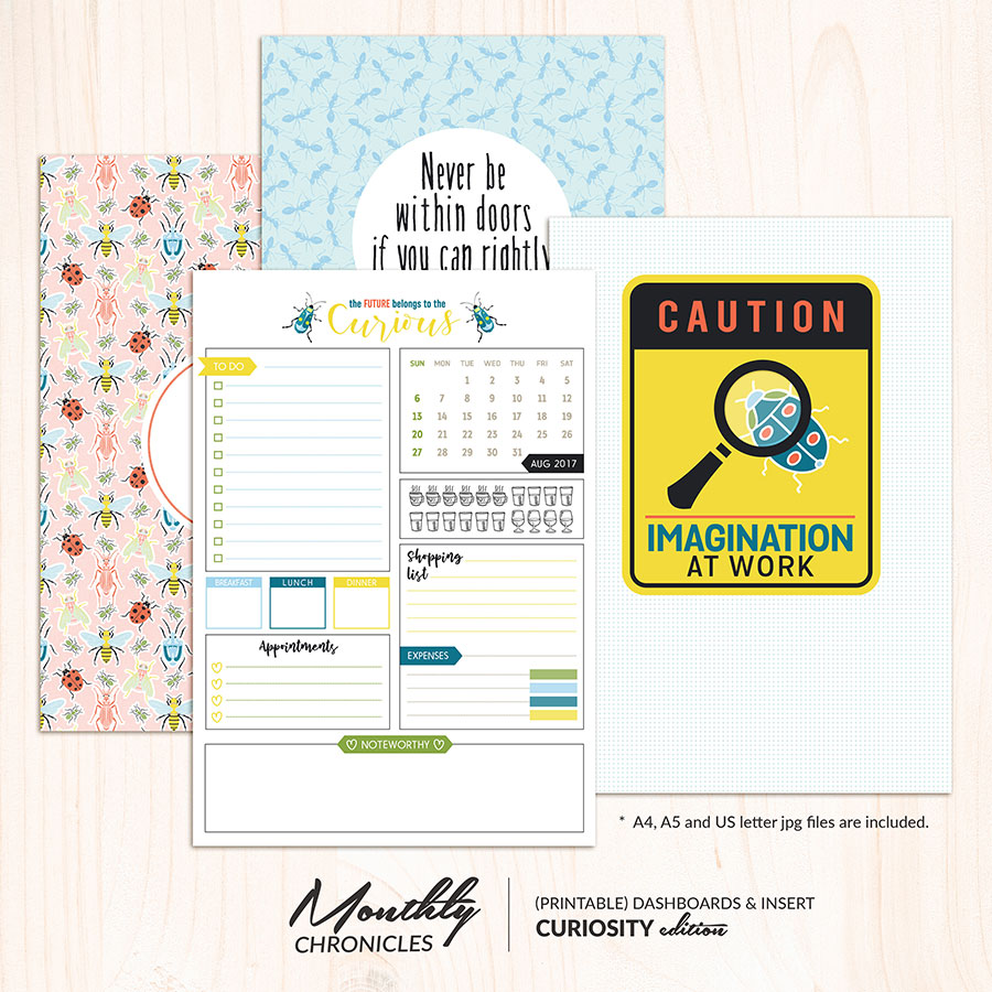 Monthly Chronicles | Curiosity Planner Dashboards & Inserts