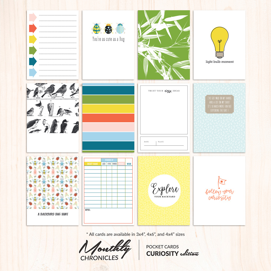 Monthly Chronicles | Curiosity Pocket Cards [SET 1]