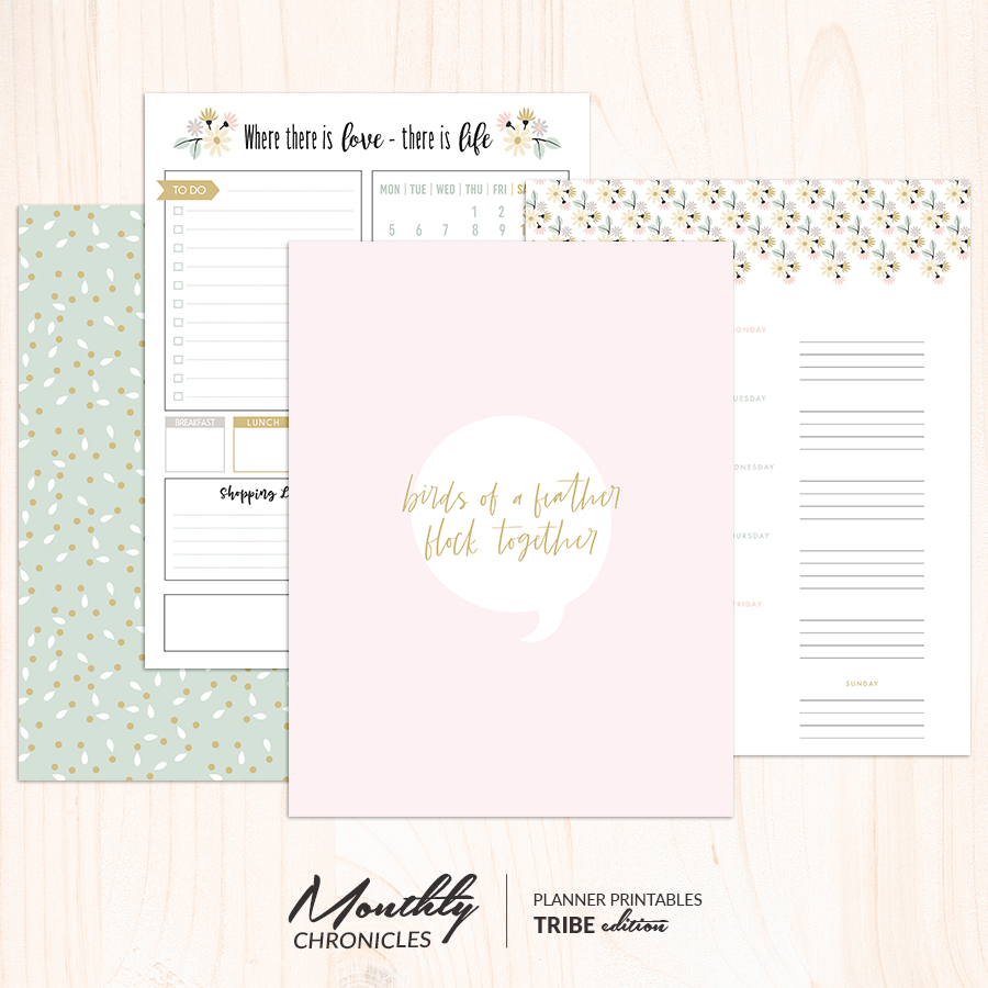 Monthly Chronicles   Tribe Planner Dashboards & Inserts