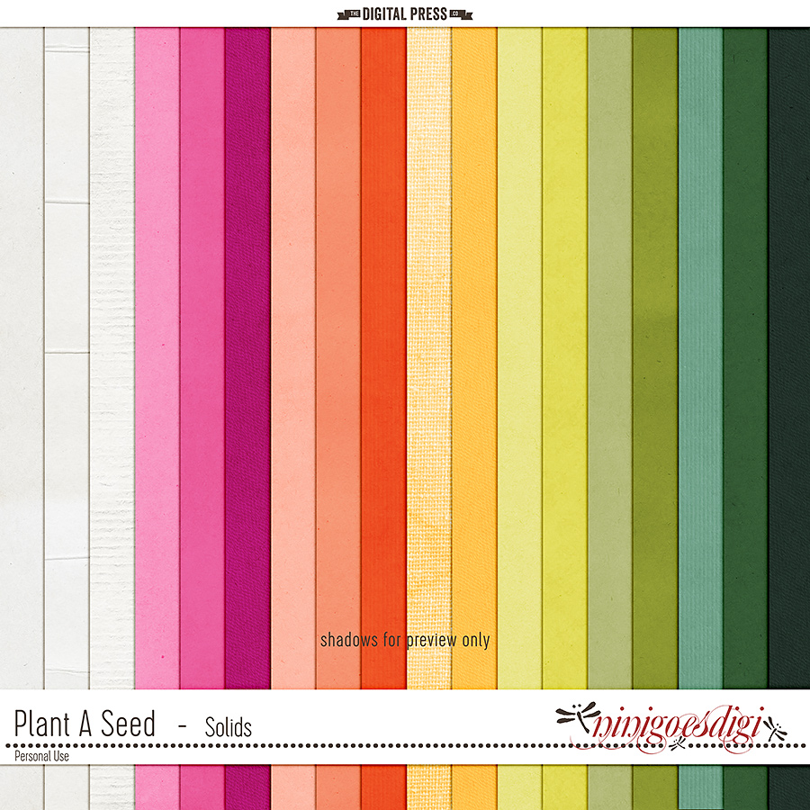 Plant A Seed | Solids