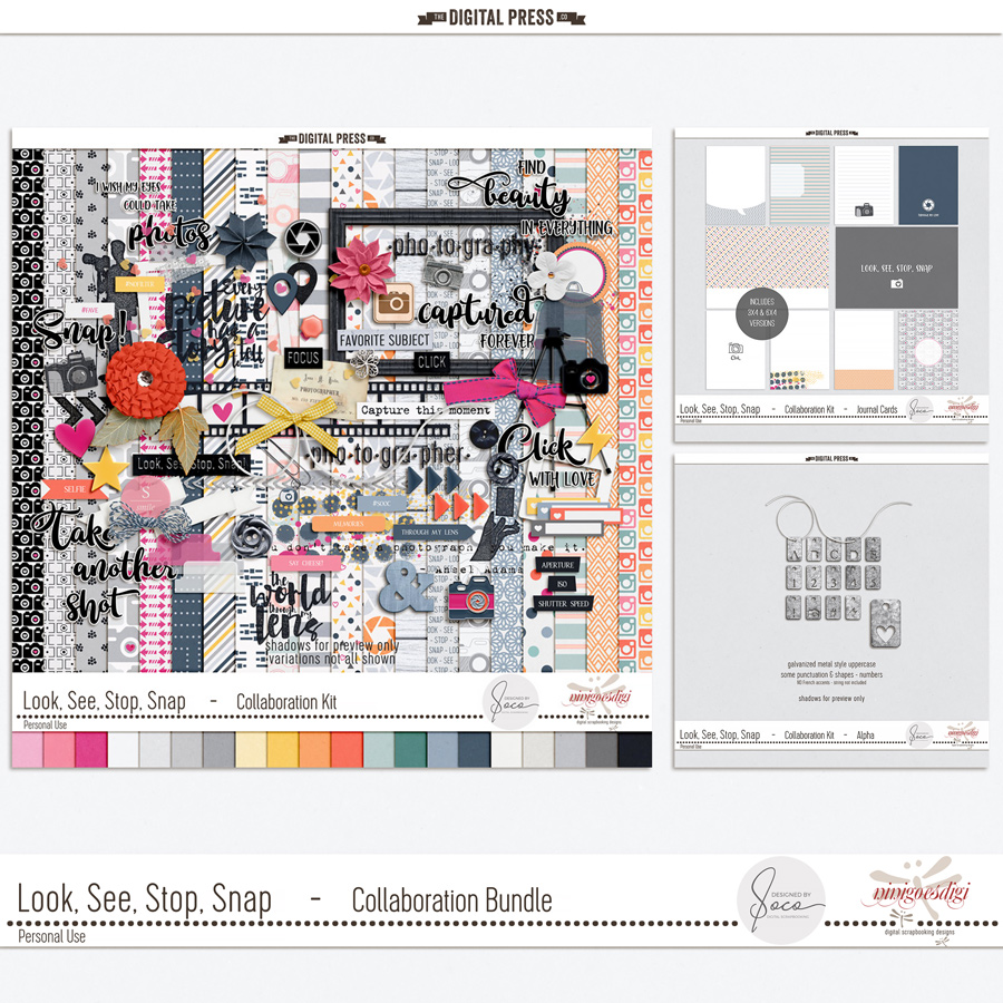 Look, See, Stop, Snap | Collaboration Bundle