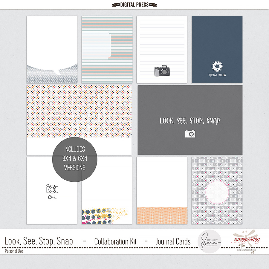 Look, See, Stop, Snap | Journal Cards
