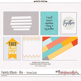 Family Album - Bro | Pocket Cards