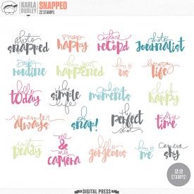 Snapped | Stamp Sheet