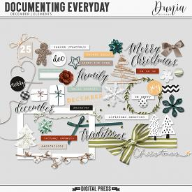 Documenting Everyday | December - Elements