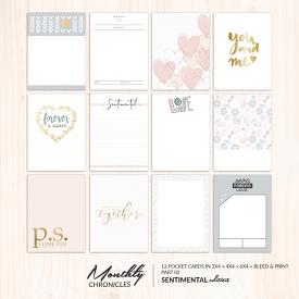 Monthly Chronicles | Sentimental Pocketcards 02