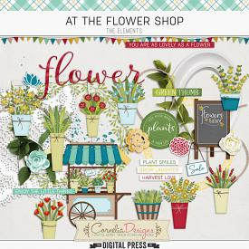 AT THE FLOWER SHOP | ELEMENTS