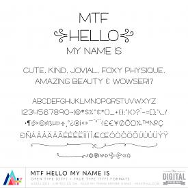 MTF Hello My Name Is