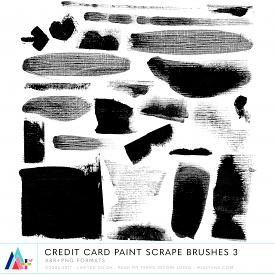 Credit Card Paint Scrape Brushes 3 (CU)