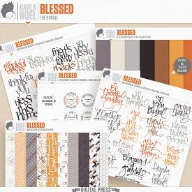 Blessed | the bundle