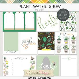 PLANT, WATER, GROW | POCKET CARDS
