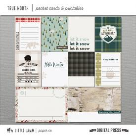True North│Pocket Cards and Printables