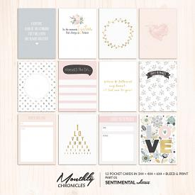 Monthly Chronicles | Sentimental Pocketcards 01