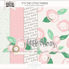 Little Things | Mini Kit