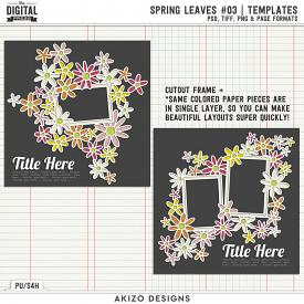 Spring Leaves 03 | Templates
