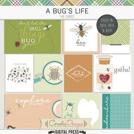 A BUG'S LIFE | POCKET CARDS