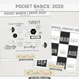 POCKET BASICS: 2020 | COLLECTION