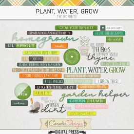 PLANT, WATER, GROW | WORDBITS
