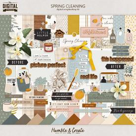 Spring Cleaning | Kit