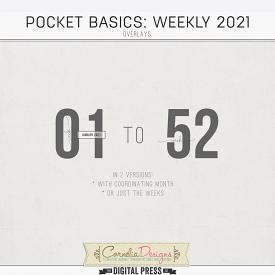 POCKET BASICS: WEEKLY 2021 | OVERLAYS
