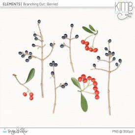 CU | Branching Out - Berries