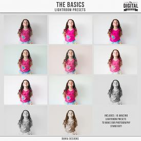The Basics | Lightroom Presets