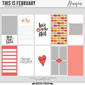 This is February | Traveler's Notebook