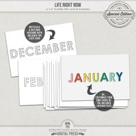 Life Right Now | 4x6 Monthly Cards & Templates