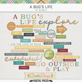 A BUG'S LIFE | WORDBITS