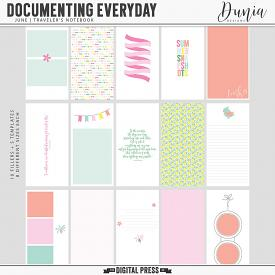 Documenting Everyday | June - Traveler's Notebook