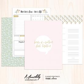 Monthly Chronicles | Tribe Planner Dashboards & Inserts